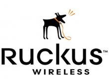 Лицензия Ruckus Wireless 909-0001-ZD12