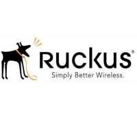 Лицензия Ruckus Wireless 909-0100-ZD00